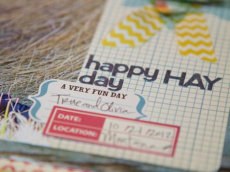 KNeddo-Happy-Hay-Day-3