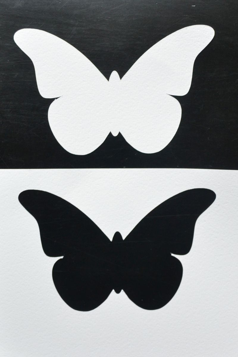 Positive and Negative Butterfly Shape