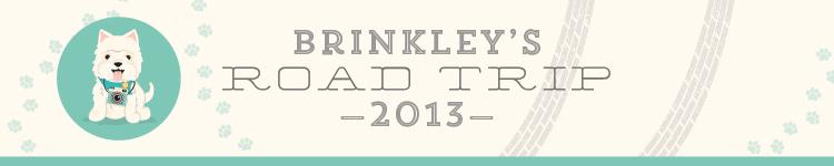Brinkleys Road Trip