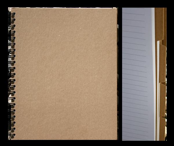 Password and contact notebook danni reid